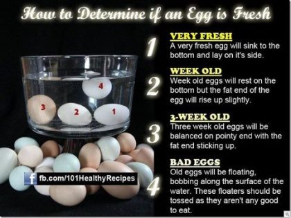 Quick test for egg freshness